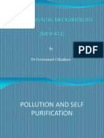 Pollution and Self- Purification