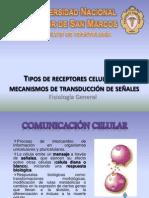 Tipos de receptores celulares y mecanismos de transducción