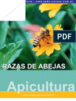 Razas de abejas