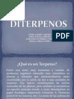 DITERPENOS