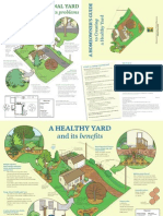 A Homeowner's Guide to a Healthy Yard