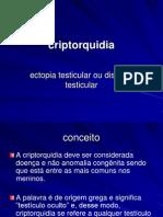 05. Criptoquidia 13.05.2009