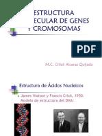 8. Genes y Cromosomas