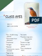 Class Avesrowenie