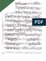 Giovanni Bottesini - Concerto for Double Bass No.2 in b Minor (Ed. Streicher