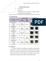 laporan praktikum fisiologi tumbuhan fotosintesis