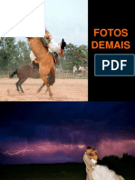 FOTOS DEMAIS1