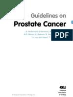 08_Prostate_Cancer September 22nd 2011