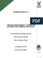 Informe 1, I.M. Lampa
