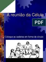 SLIDE 5 - A reuni+úo da c+®lula
