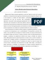 Resumo_Rochas ígneas_Evolução magmatica