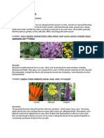 Different Kinds of Plants