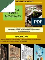 Cultivo de Plantas Medicinales por Q.F. Marilú Roxana Soto Vásquez