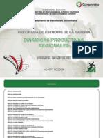 DINAMICAS PRODUCTIVAS REGIONALES