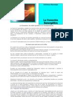 ALESSANDRO DI MASI - 1. QUÉ ES LA CONEXIÓN SANERGÉTICA (2)