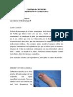 Examen Cultivo de Heridas