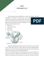 Benign Prostate Hyperplasia Defenisi