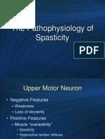 Spasticity Pathophysiology