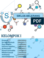 Siklus Sulfur - Copy