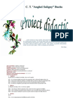 0 Proiect Didactic