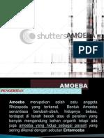 Kelompok 1 Amoeba