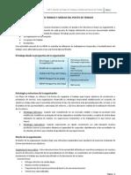 Gestión de Flujos de Trabajo y Análisis del Puesto de Trabajo