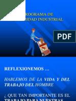 CharlaSeguridad Industrial.1ppt