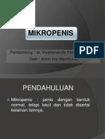 Mikropenis Edited
