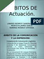 AMBITOS DE Actuación