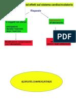 Adattamenti Cardiocircolatorio
