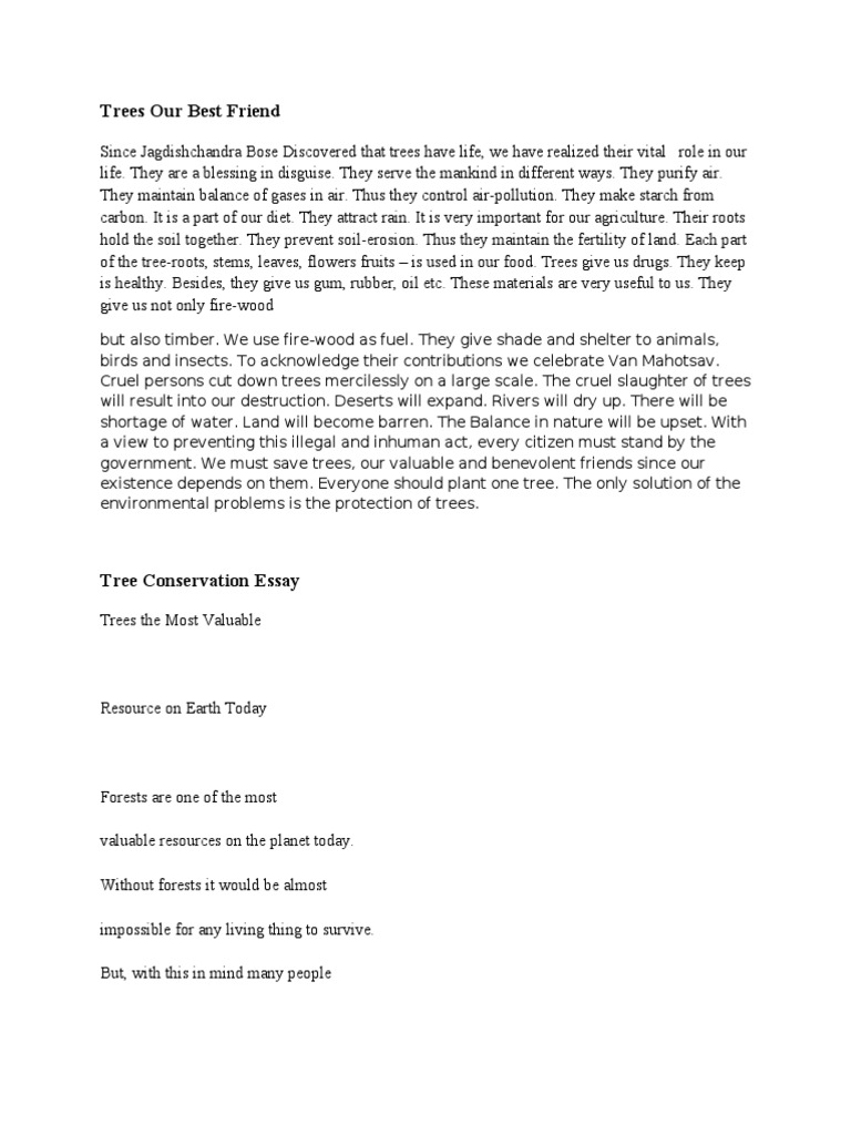 Essay on trees our best friend in english