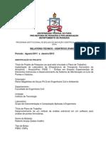 Relatório Roberto (02-2012)