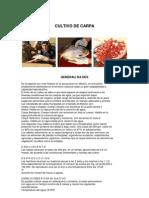 CULTIVO_CARPA2