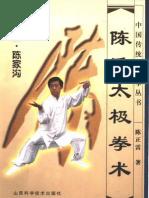 Chen zhenglei taijiquan