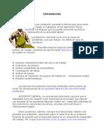 Seguridad y Proteccion Personal Minera