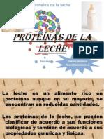 PROTEÍNAS DE LA