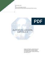 AUTOEVALUACION CAP3 APA2