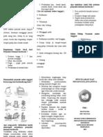 Leaflet DHFfff