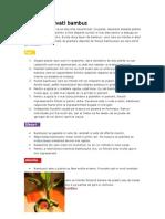 Cum Sa Cultivati Bambus