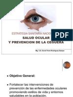 33872082 Estrategia Sanitaria Nacional de Salud Ocular