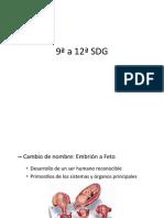 9ª a 12ª SDG