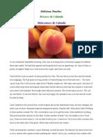 Delicious Peaches  / Préssecs de Calanda