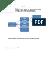 Proiect ERP