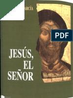 Jesus-el-Señor, Jose Ruiz Garcia