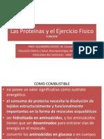 Las Proteinas y El Ejercicio Ppt