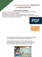 Método Natural de Alfabetização  Gilda Rizzo e Heloisa