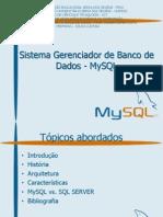 Sistema Gerenciador de Banco de Dados - MySQL