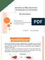45235630-6º-ano-AGRESSOES-DO-MEIO-EXTERIOR-microbios-Prof-Carlos-Palma