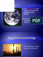 Orgamisms and Energy