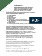 Patente Municipal 1